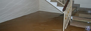 Sewage Damage Cleanup New Jersey
